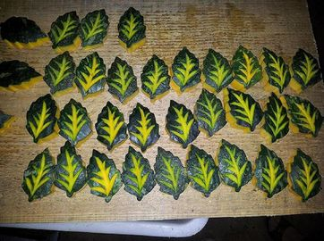 China Frozen Blanched Sweet Pumpkin(Leaf Shaped) For Food Decoration supplier
