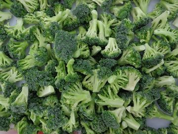 IQF Frozen Broccoli Florets, blanched, head diameter 3-5 cm